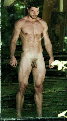 Adrian Udrea male fitness model